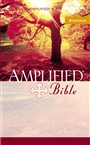 amplified-bible-softcover-